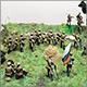 Пехота Русской армии
