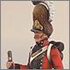 Гренадер Ольденбургского полка, Дания, 1807-13 гг.