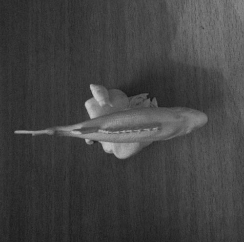 Скульптура: Окунь, фото #6