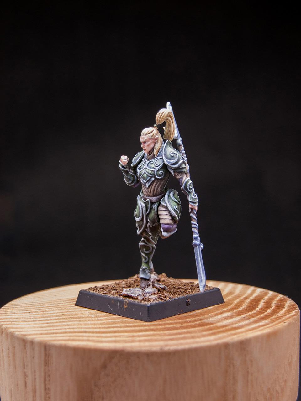 Разное: Эльфы Серебряной гвардии, фото #10