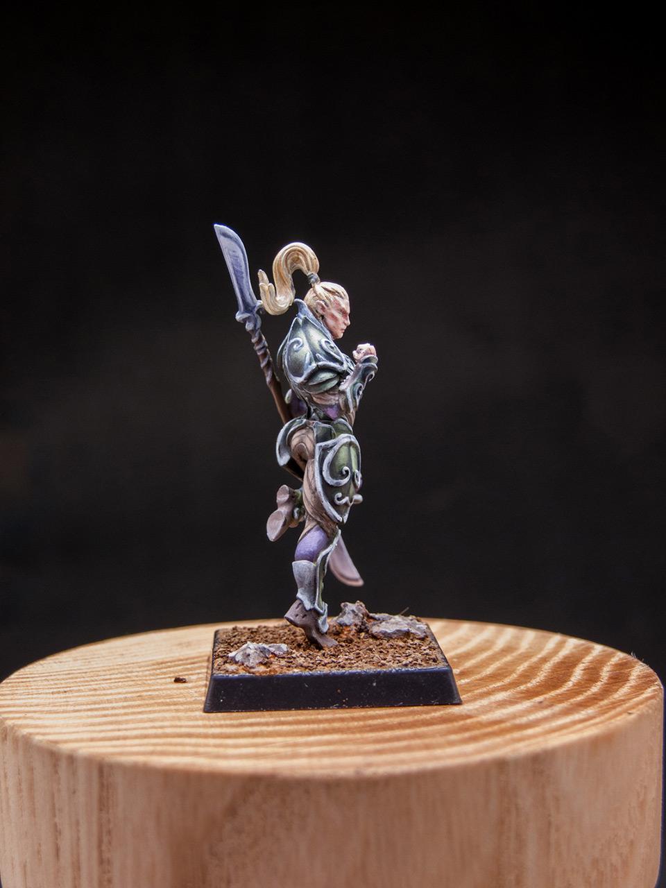 Разное: Эльфы Серебряной гвардии, фото #15