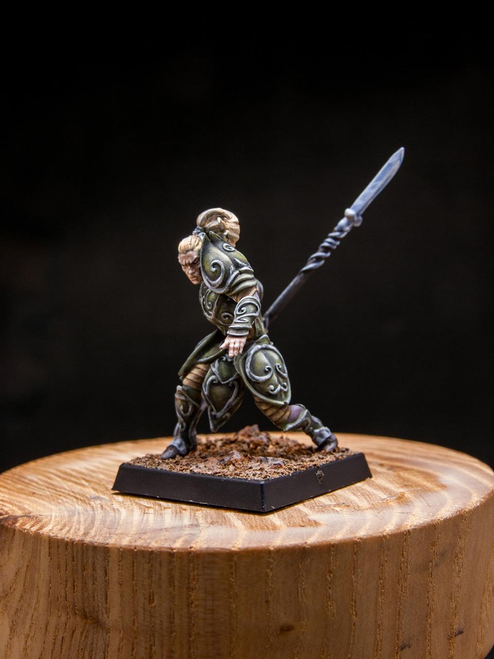 Разное: Эльфы Серебряной гвардии, фото #2
