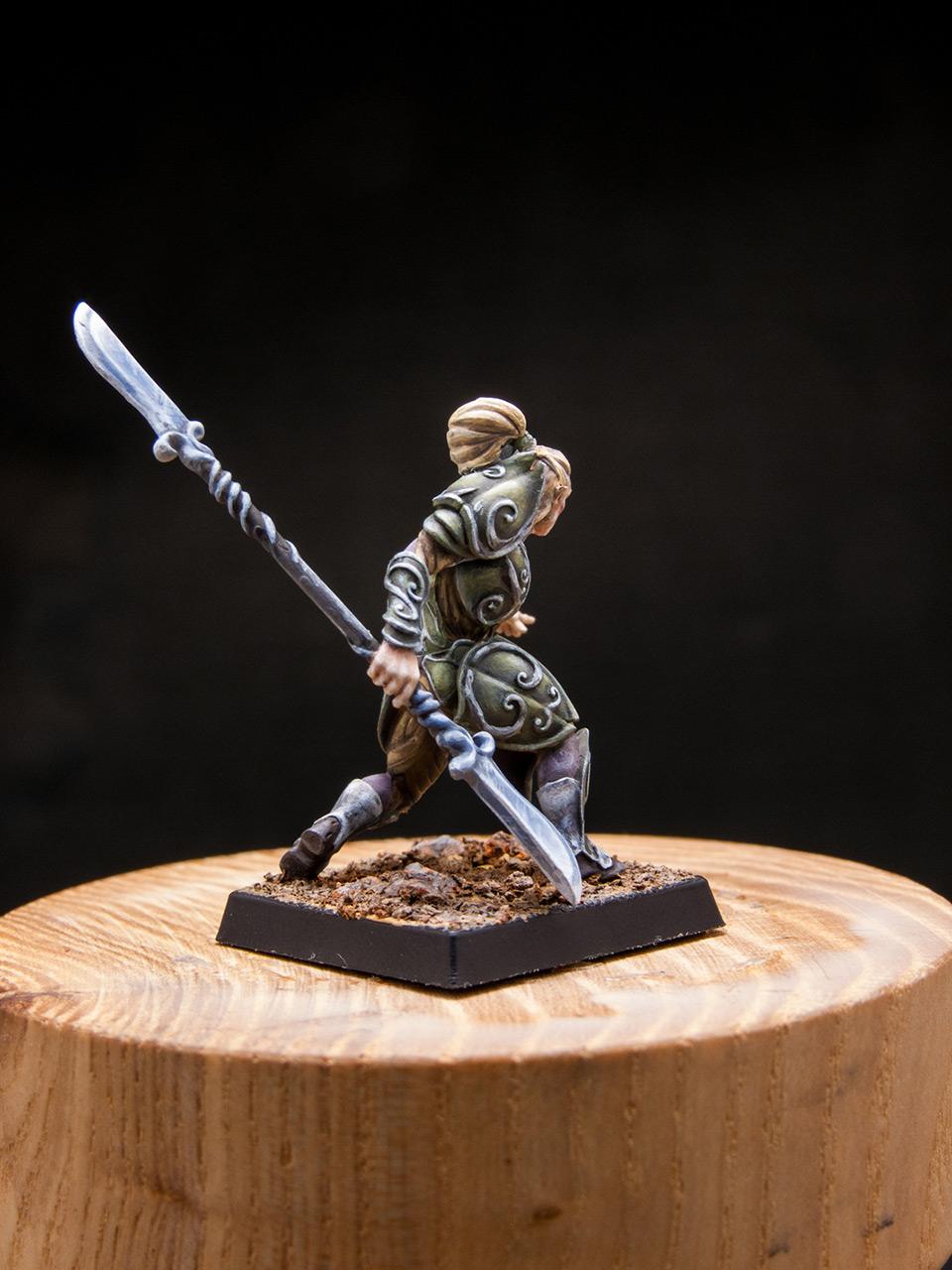 Разное: Эльфы Серебряной гвардии, фото #6