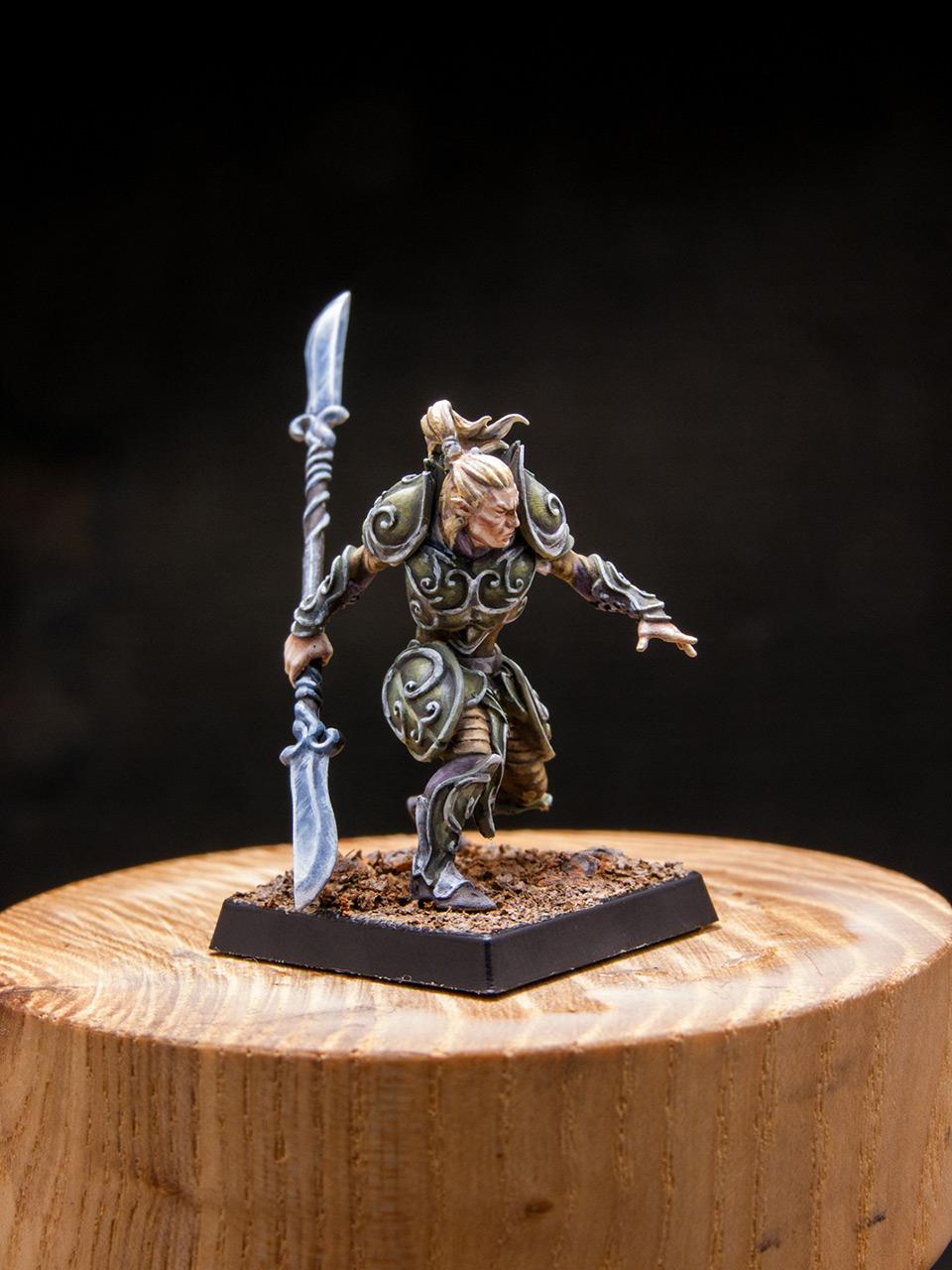 Разное: Эльфы Серебряной гвардии, фото #8