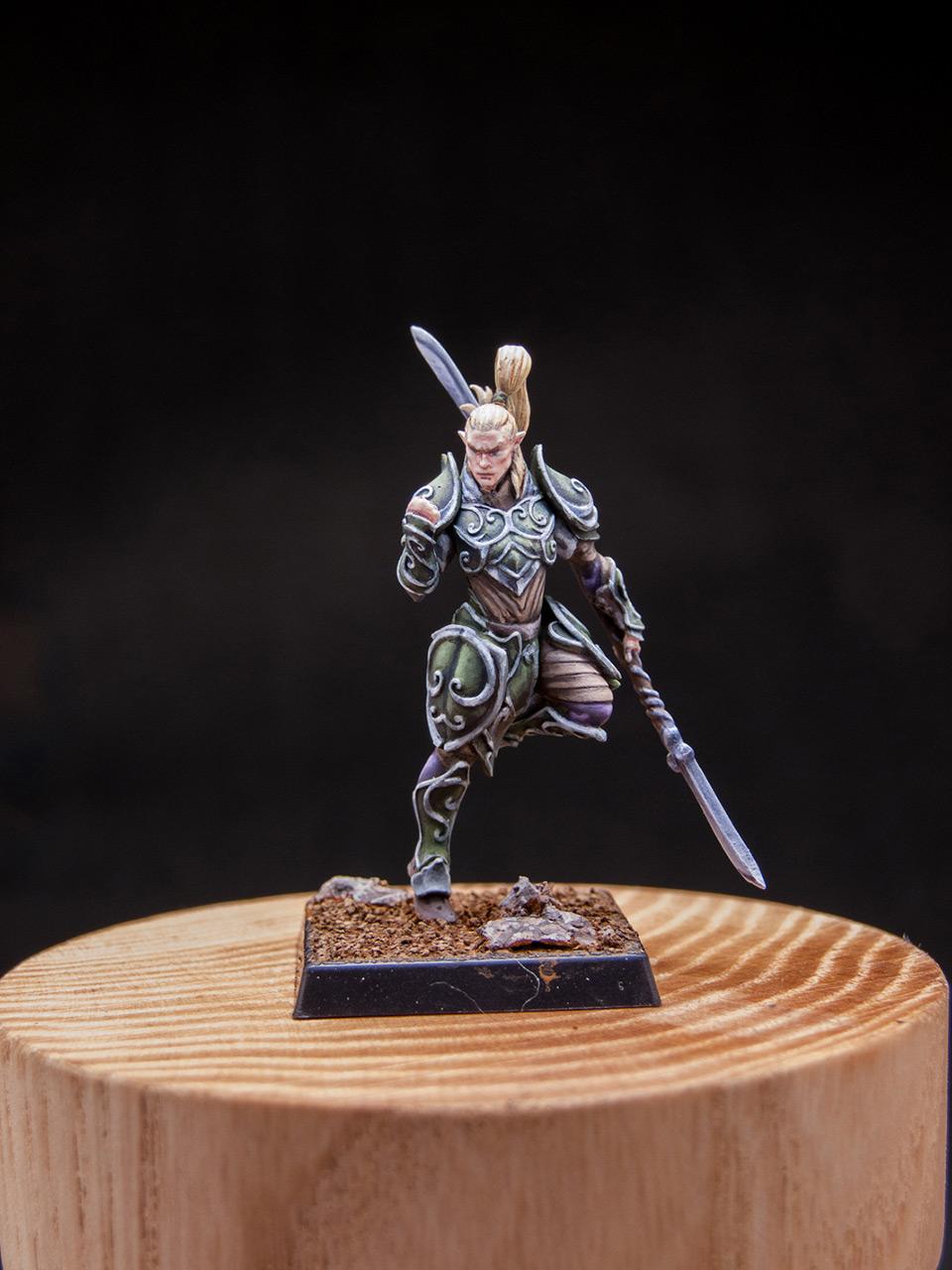 Разное: Эльфы Серебряной гвардии, фото #9