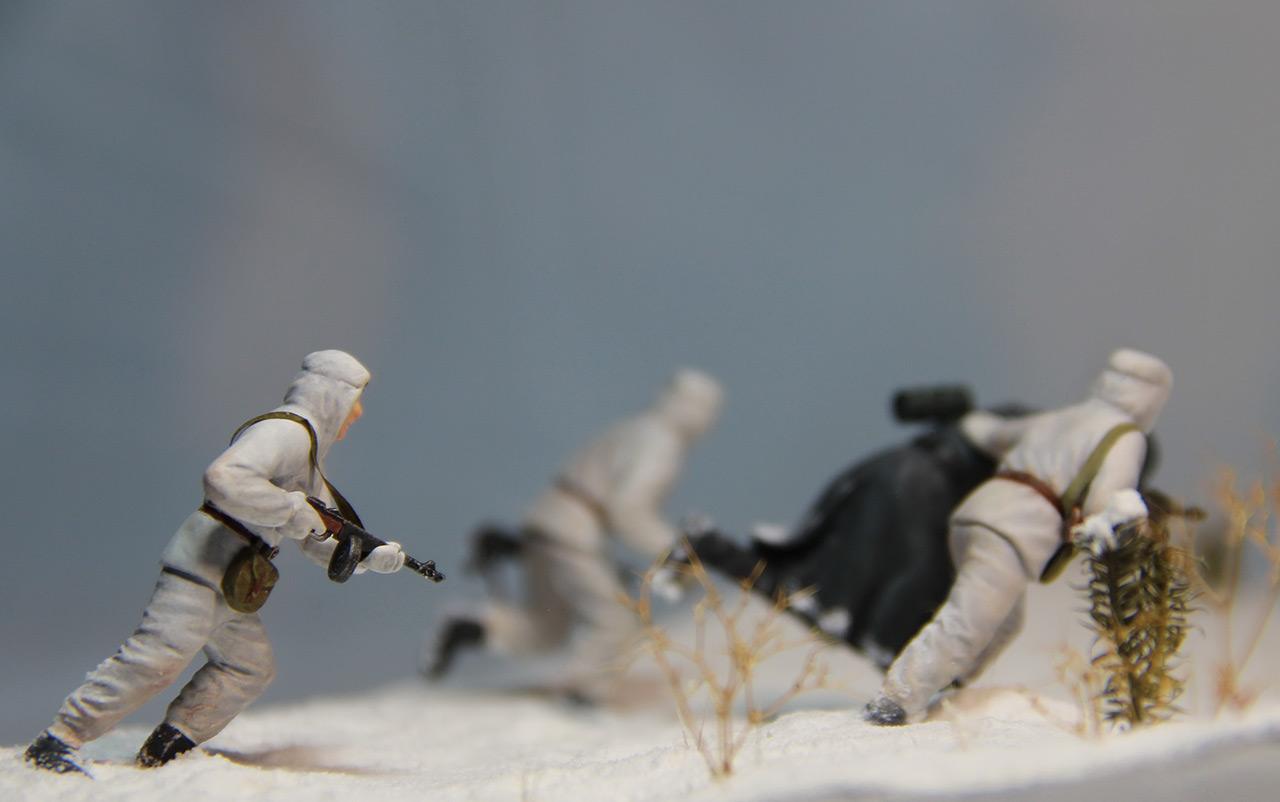 Диорамы и виньетки: Шлиссельбургская разведка, фото #12